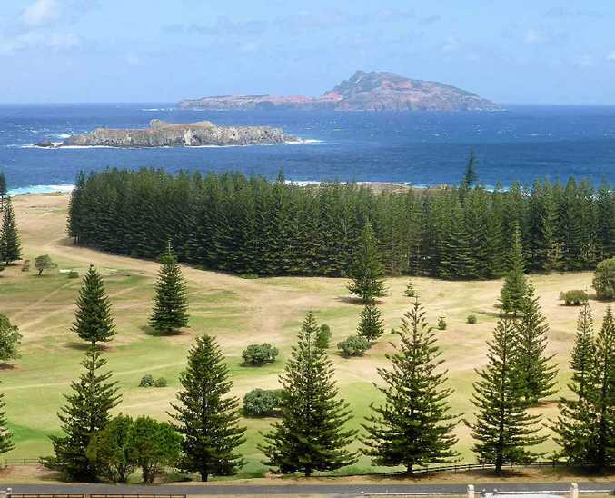 Pines dominate Norfolk Island along with beautiful sand stretches and picturesque views.