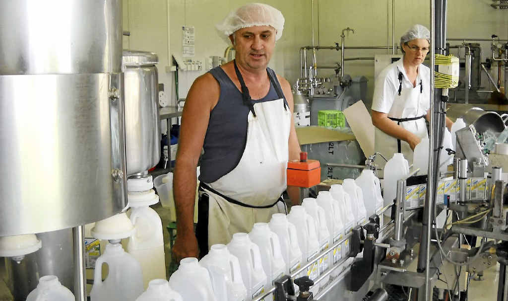 TOUGH TIMES: Dairy farmer Bruce Poulsen at his Baffle Creek milk factory, says the situation is almost at the point of no return.