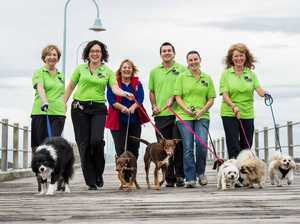 Pooch power to step out for Million Paws