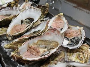 Poor water quality to cripple Richmond River oyster industry