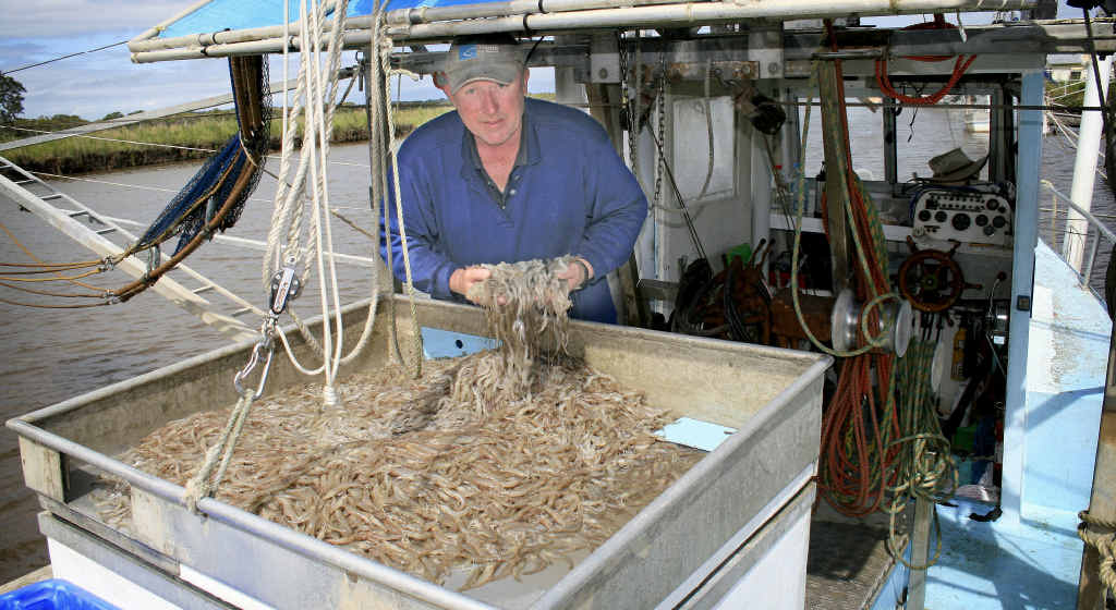 WORTH CATCHING?: Maclean-based trawler operator Bruce Ellem with his catch from his first day trawling Lake Wooloweyah this season. PHOTO: Rodney Stevens