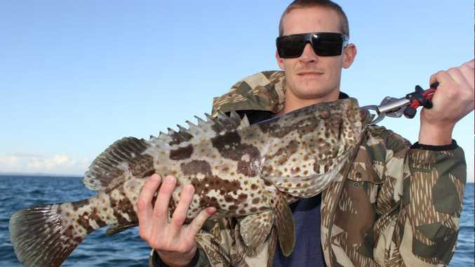 Brandon Henman with a cod caught on a charter with Hervey Bay Fly and Sportfishing.
