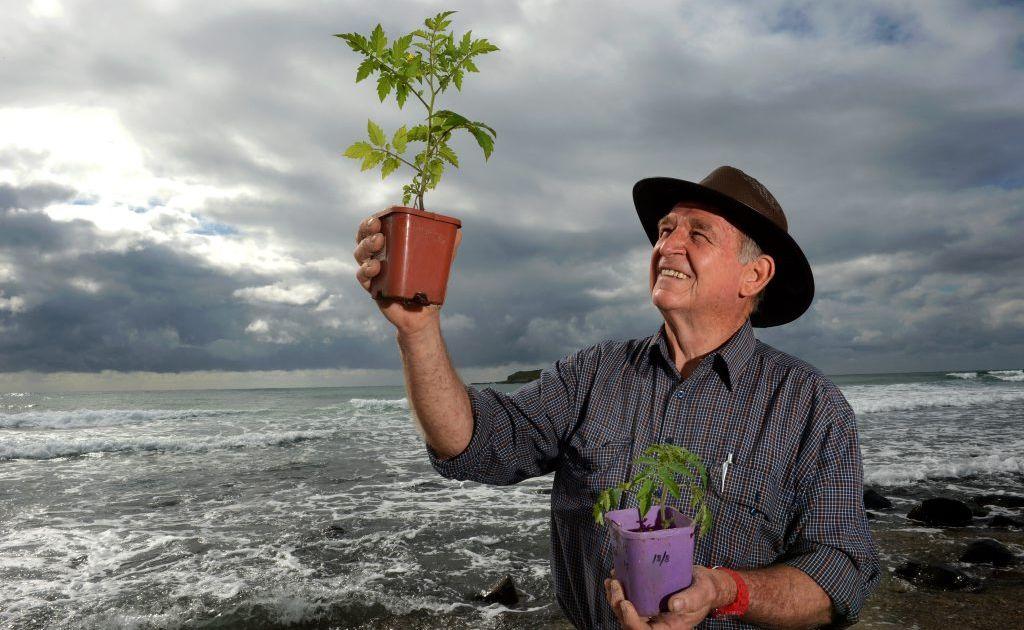 Bio-scientist Leyland Minter on the beach at Fingal Head.
