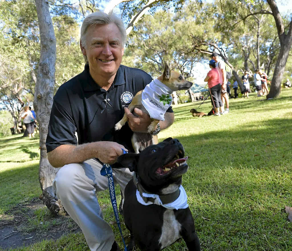 Dog trainer Steve Austin at the Million Paws Walk at Canoe Point, Tannum Sands.