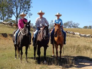 Kilkivan property owner goes into battle over grazing rights