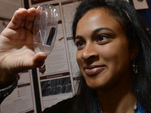 Speedy science project a winner for mobiles