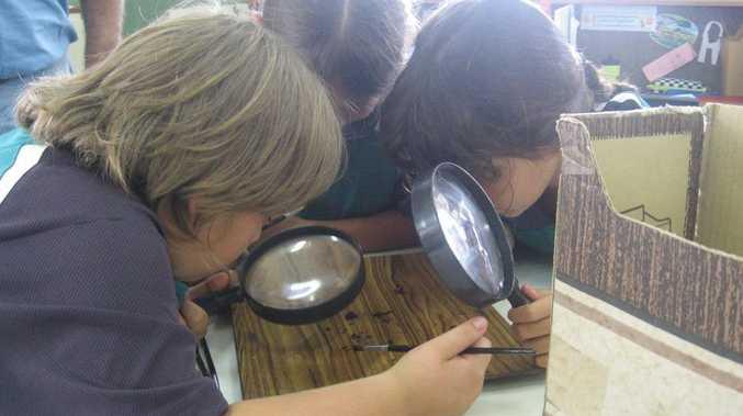 The Hervey Bay Christian Academy is hosting a Science Fair on June 6.