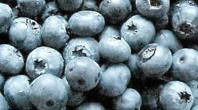 Blueberries are full of antioxidants, vitamin C, iron and enzymes with anti-inflammatory properties.
