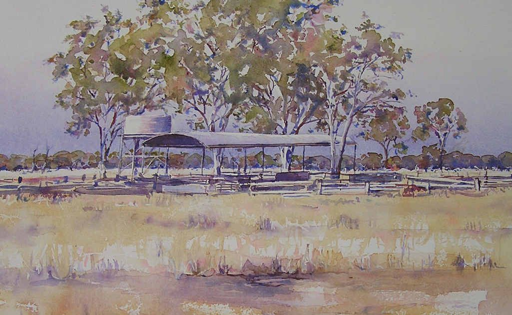 The colours and landscape of rural Australia have long been the inspiration for former Stanthorpe artist Belinda Perkin's work.