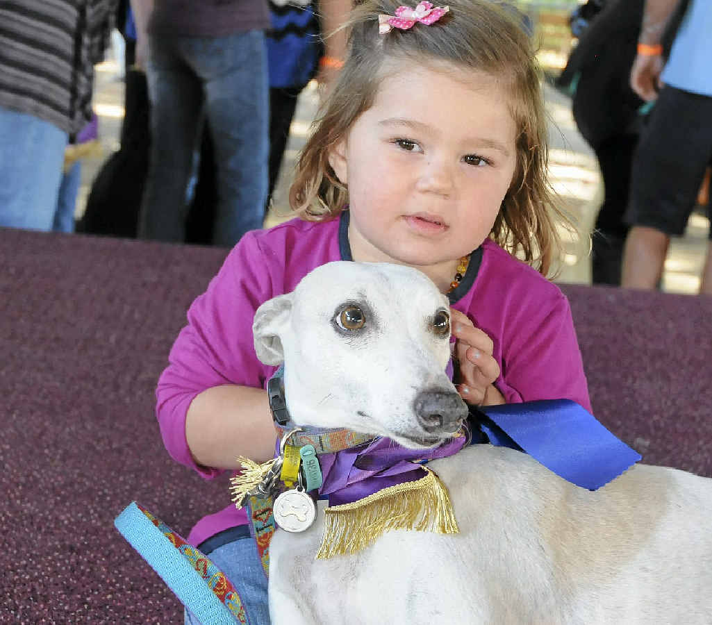Claudia Truman spent her second birthday at the Esk Show, winning Champion Pet with her beloved whippet Stanley.