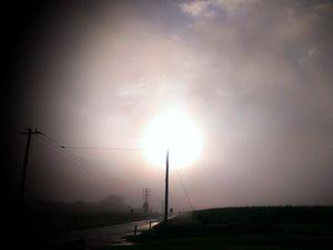 Fog causes crashes