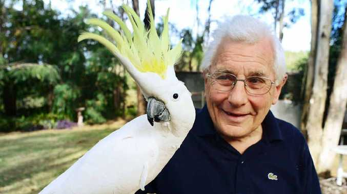 WHO'S A PRETTY BOY? Terry White, of Redbank Plains, with his nine-year-old pet cockatoo, Casper.