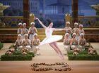 Toowoomba's Bolshoi boy a ballet star