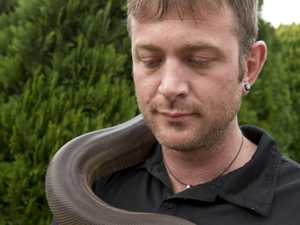 Snake catcher released on bail after bow and arrow incident