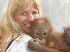 Award-winning orangutan docco screening at Byron