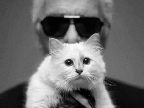 Karl Lagerfeld with his cat Choupette