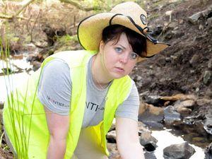 Volunteers restore creek after vandals tore out plants