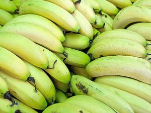 Banana growers reassured project here to help