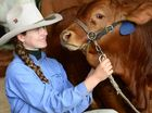 Amy Birch, 15, from Monto, gets up close and personal with a Birch Droughtmasters bull from Rosevale at the 2013 Rockhampton Show.
