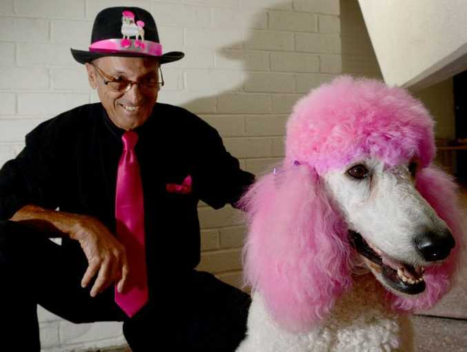 Tony Zocchi with Coco Channel before the Poodle Parade. Photo: Blainey Woodham / Daily News