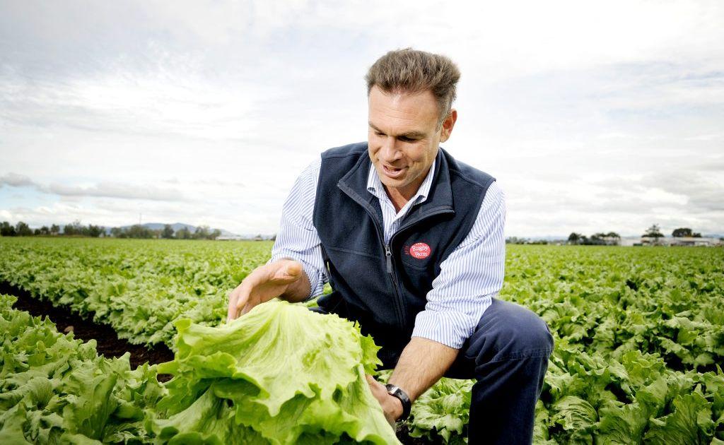 Matt Hood, director of Rugby Farms, Gatton, named AUSVEG Farmer of the Year.