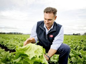 AUSVEG Farmer of the Year