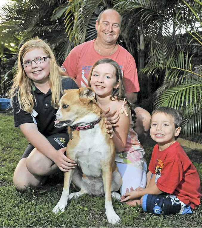 The Davies family from Peregian Springs have adopted Fijian dog, Poppy, who was given major reconstructive surgery after having her nose cut off by a machete in a hunting accident. Pictured are Mark Davies with his kids, India, 12, Sienna, 9, and Jax, 4.