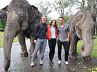 Actors Tim Minchin, Melanie Chisholm and Ben Forster with some newfound friends at Australia Zoo.