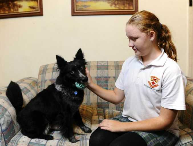 Sian Wormald, 12, with her dog Trance. Sian is undergoing treatment for Tolosa Hunt Syndrome.