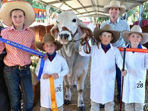 Sturdy kids put the cattle first