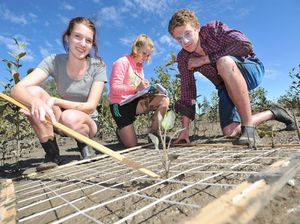 Students learn about mangroves on Burrum Heads camping trip
