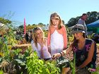 Expo's vegie garden offers food for thought