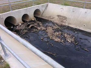 Black sludge found in Gladstone waterways to be investigated