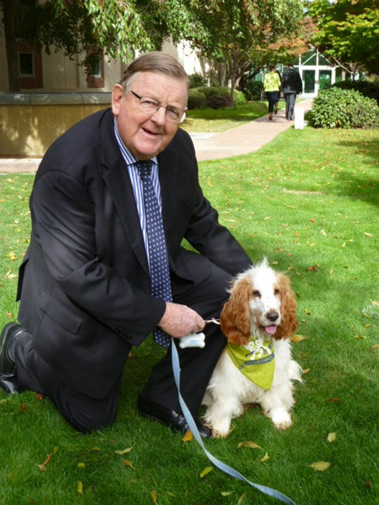 Member for Hinkler Paul Neville with a happy puppy at the Hounds on the Hill event in Canberra. Photo Contributed