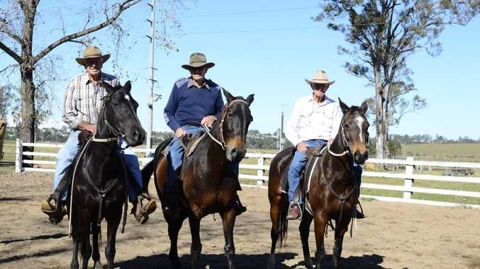 The McLennan brothers (from left) Reg on Solar, Rod on Cowgirl and Rupert on Bracelet were competing in Grafton's annual penning event at Hawthorne Park on Saturday. Photo Debrah Novak / The Daily Examiner