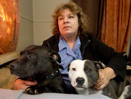 Judy Garland has been reunited with her stolen pet dogs.