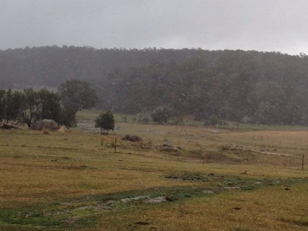 WINTER SNOW: Snow fell in the Eukey highlands, on the outskirts of Stanthorpe, earlier this afternoon. Photo Contributed