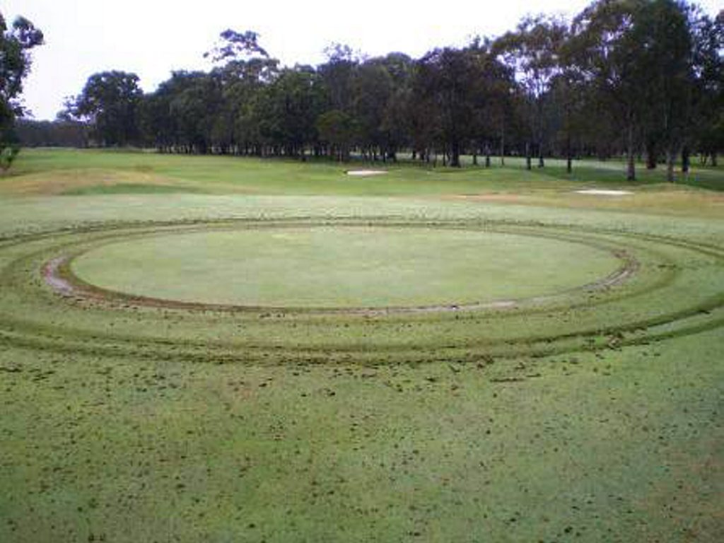 The mysterious circles at the Coolangatta Tweed Golf Club