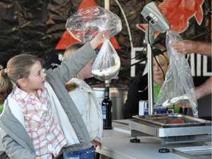 Bag the big ones at Rainbow Beach's Fishing Classic