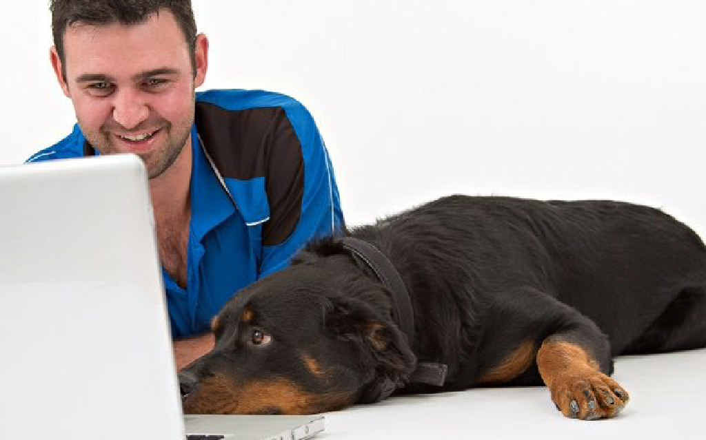 Daniel Rose, of Kadan K9 Training, and rottweiler Zylah Magnussen, check out an online course. Zylah, a nine-month-old puppy, is learning the ropes with Kadan K9 Training.