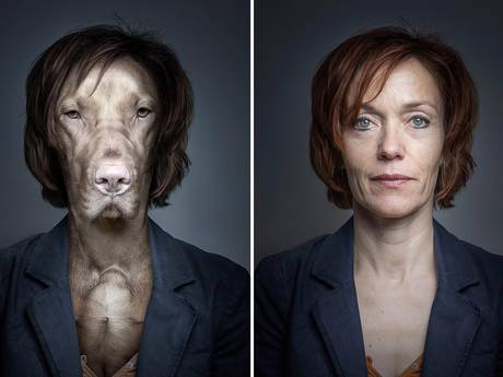 Photographer Sebastian Magnani has used photo manipulation to create these images showing the resemblance between dogs and their owners