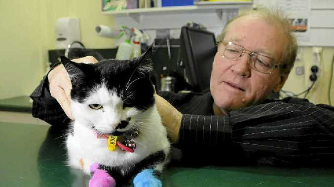 TIMELY REMINDER: Dr Graeme Turner, with Pushka the cat, encourages pet owners to be responsible and desex their animals.