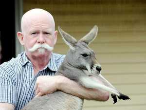 Colin Candy with Frances the kangaroo.