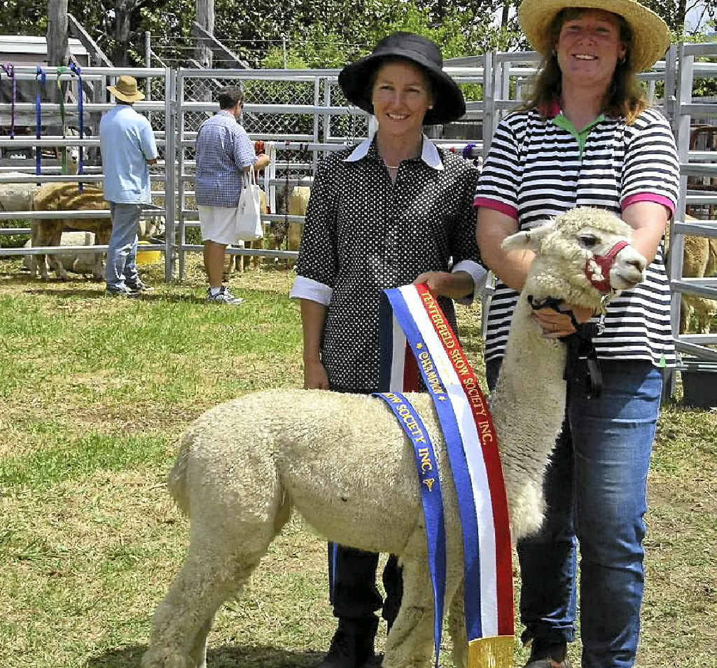 Julie Hockings and Fiona Henderson with Supreme Champion Alpaca at the Tenterfield Show 2006.
