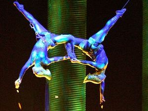Cirque du Soleil performer and mum of two dies in plunge
