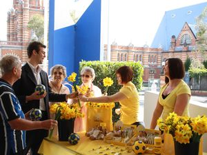 Cancer Council calling for Daffodil Day volunteers