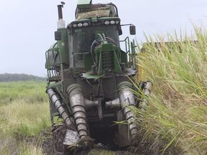 Lucky escapes as harvesters hit power lines