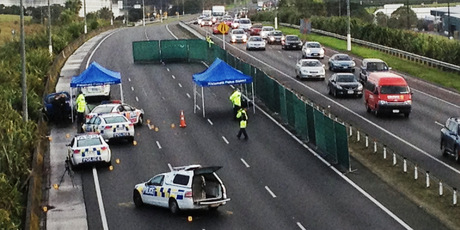 The vehicle was finally stopped on the Northern Motorway at Mairangi Bay.