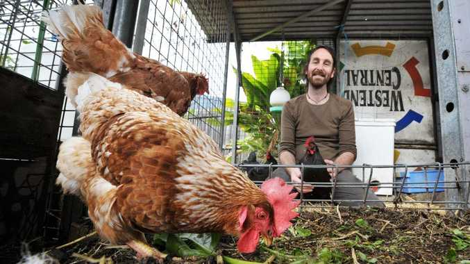 URBAN FARMING: Rob Gray embraces sustainable practices in his garden which has chickens, fruit, vegetables and a worm farm.
