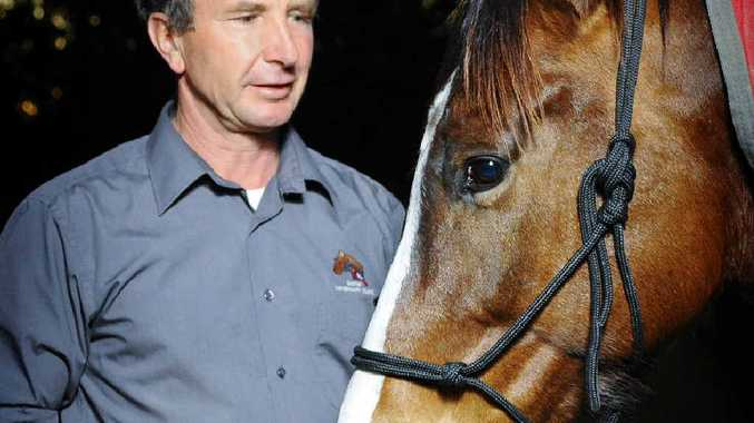 PROTECTION: Grafton Veterinary Clinic owner Dr Alan Giles with Brownie. Dr Giles is encouraging owners to vaccinate horses against hendra virus. Photo: JoJo Newby